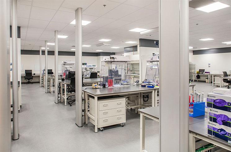 OSU_Molecular Lab 2